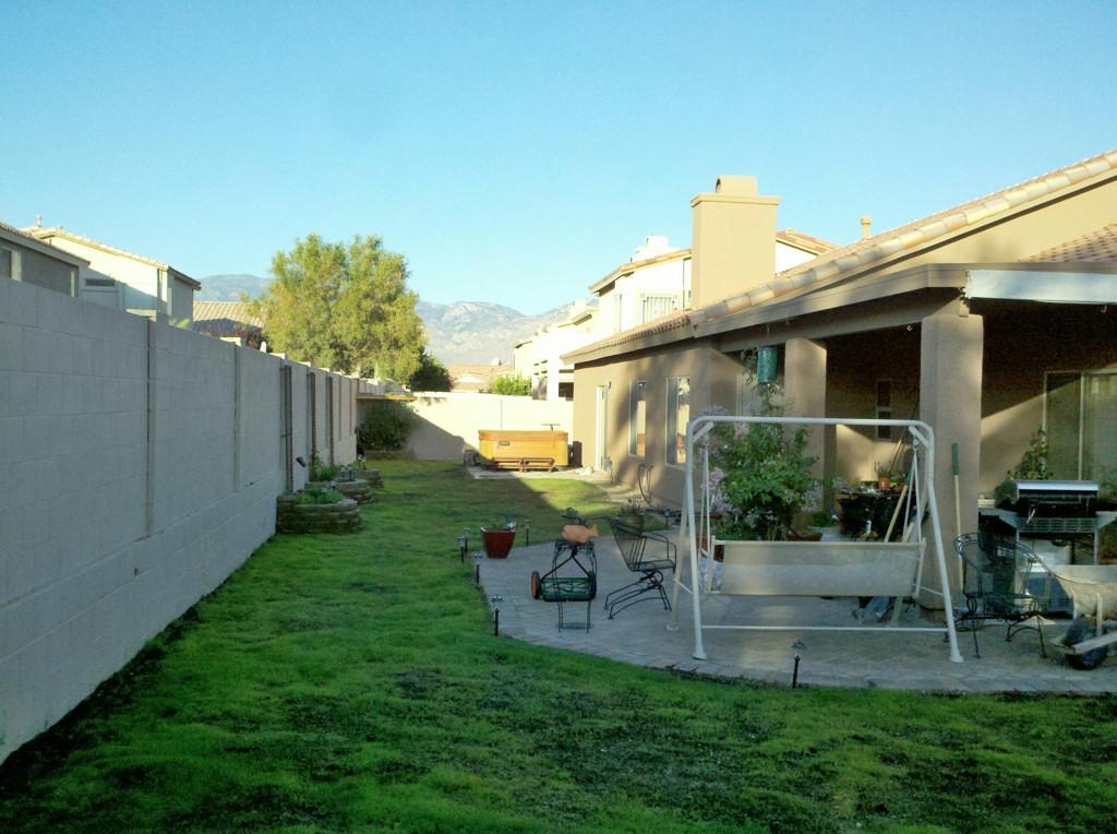 backyard no shade