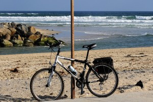 Moon Park Beach Trail & Frankenbike